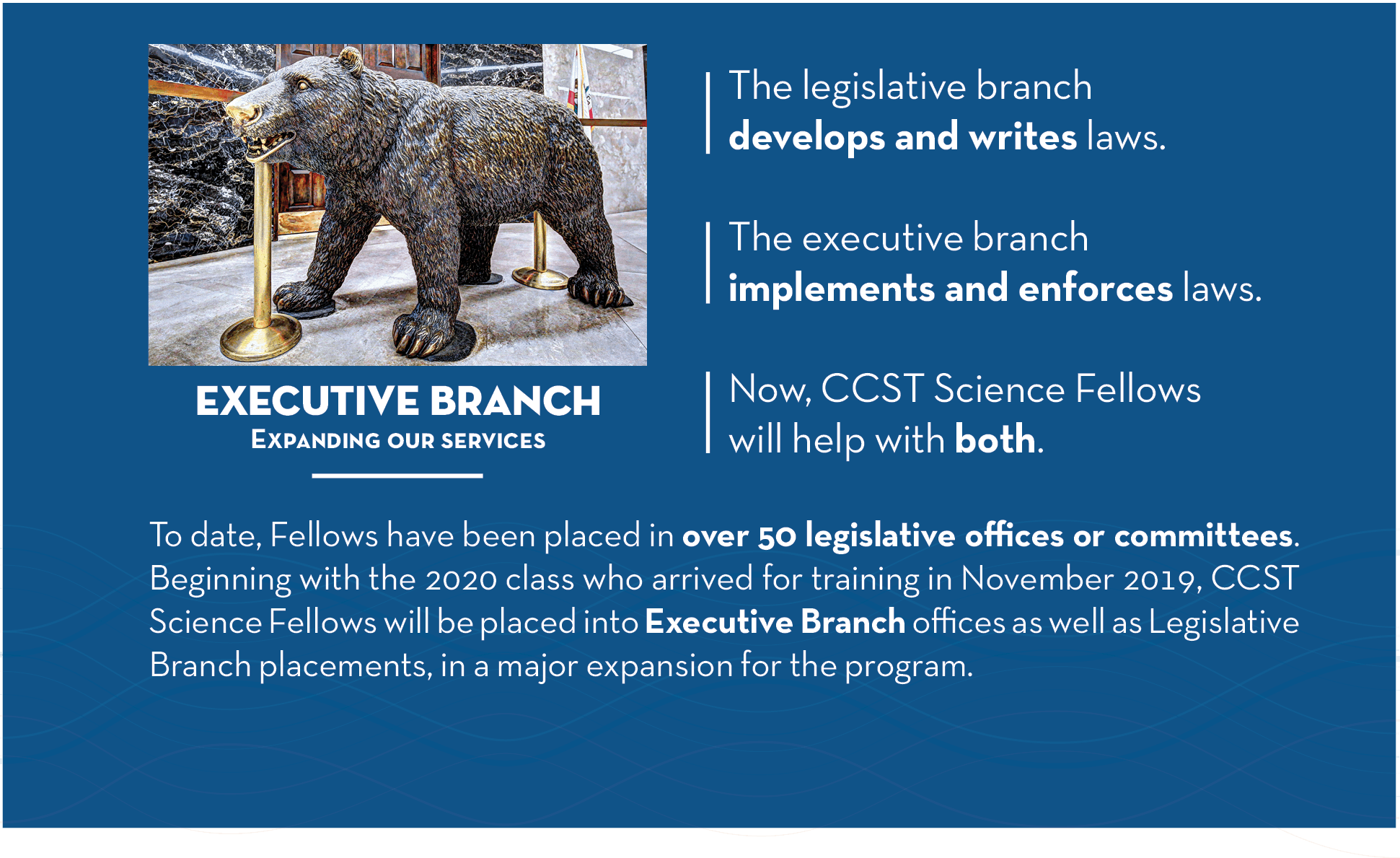 Executive Branch: Expanding our services