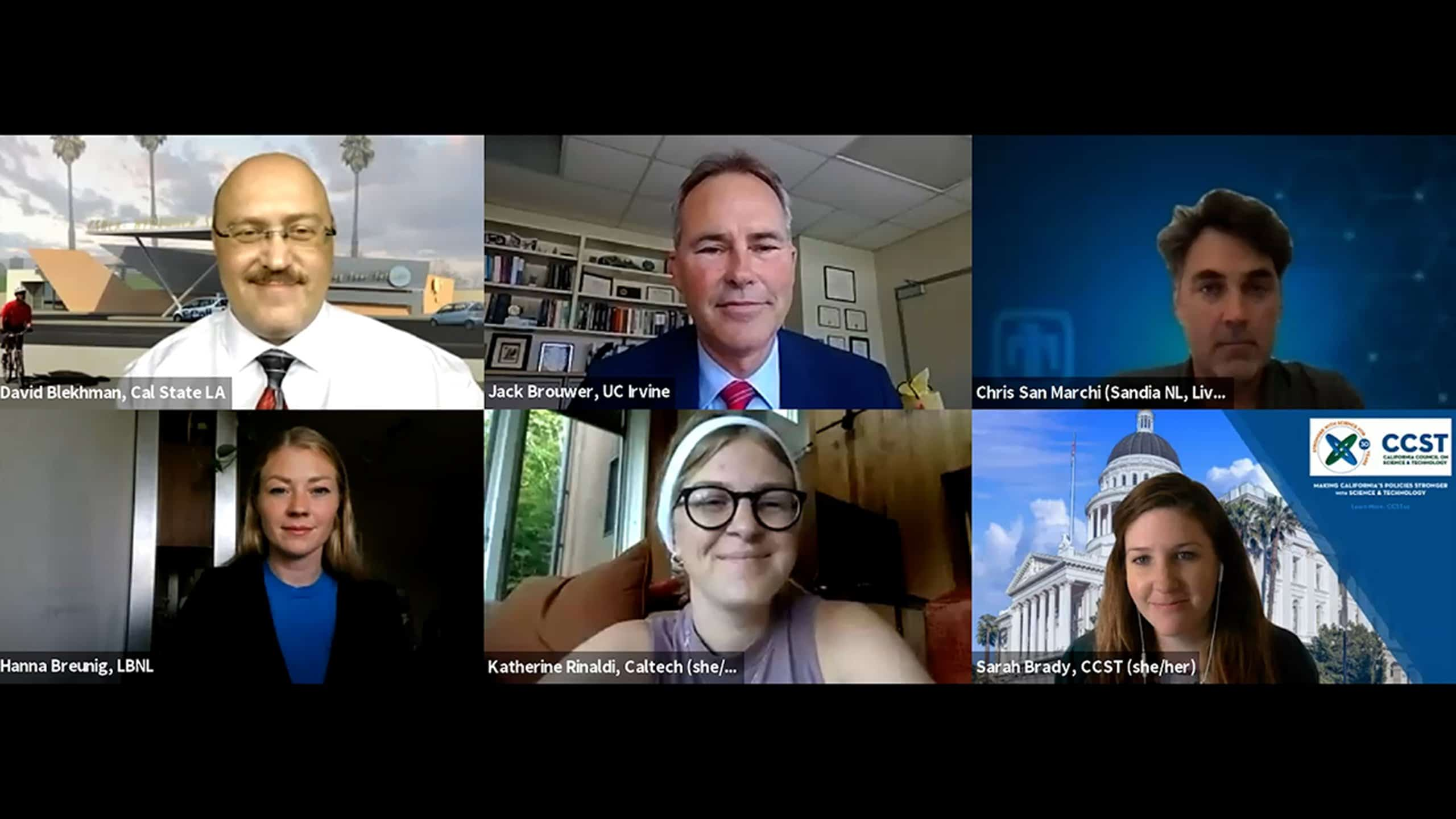Zoom screenshot of panelists