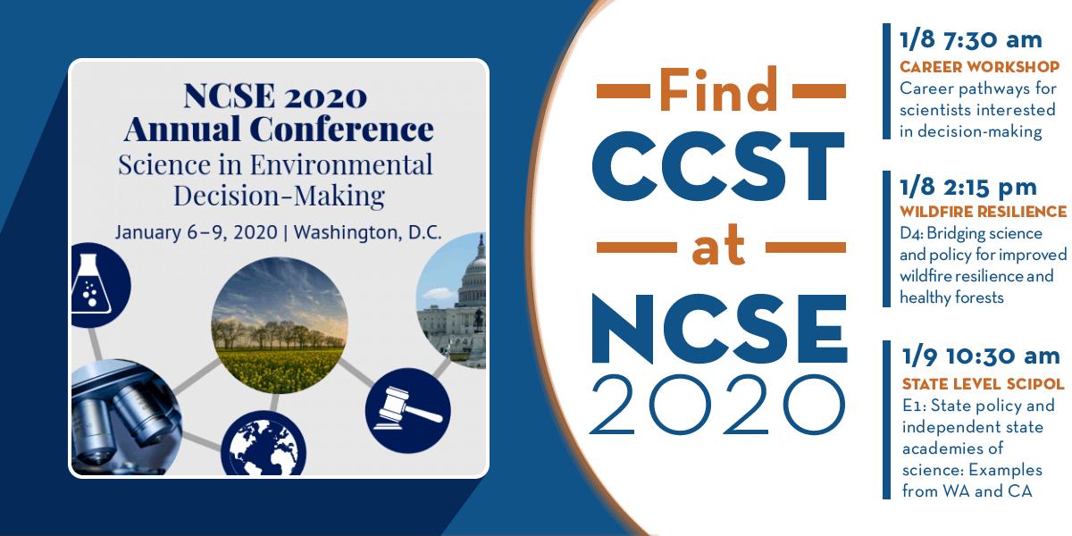 CCST at NCSE Web