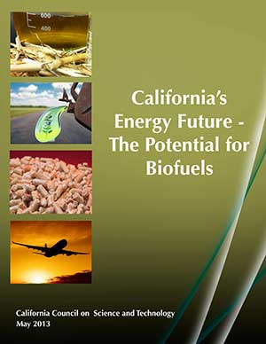 California's Energy Future: The Potential for Biofuels Cover