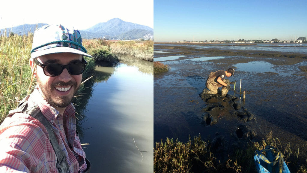 Dylan Chapple standing next to his element — the salt marsh ecosystem of San Francisco Bay. (Images courtesy of Dylan Chapple)