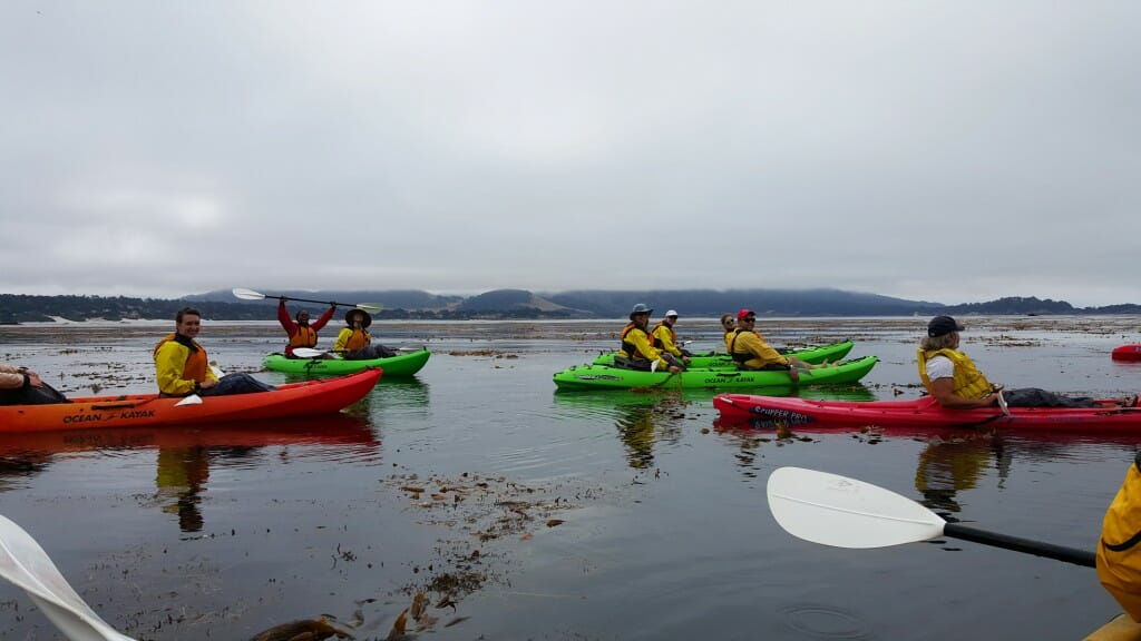 CCST Science Fellows took a break from the Legislative year by kayaking at Stillwater Cove in Monterey County.