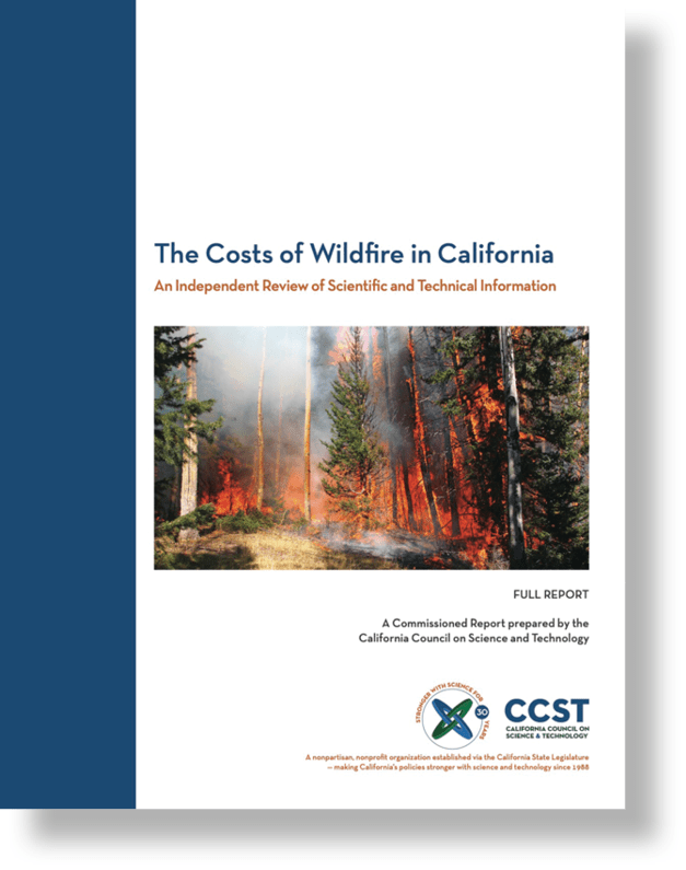 Wildfire Report cover