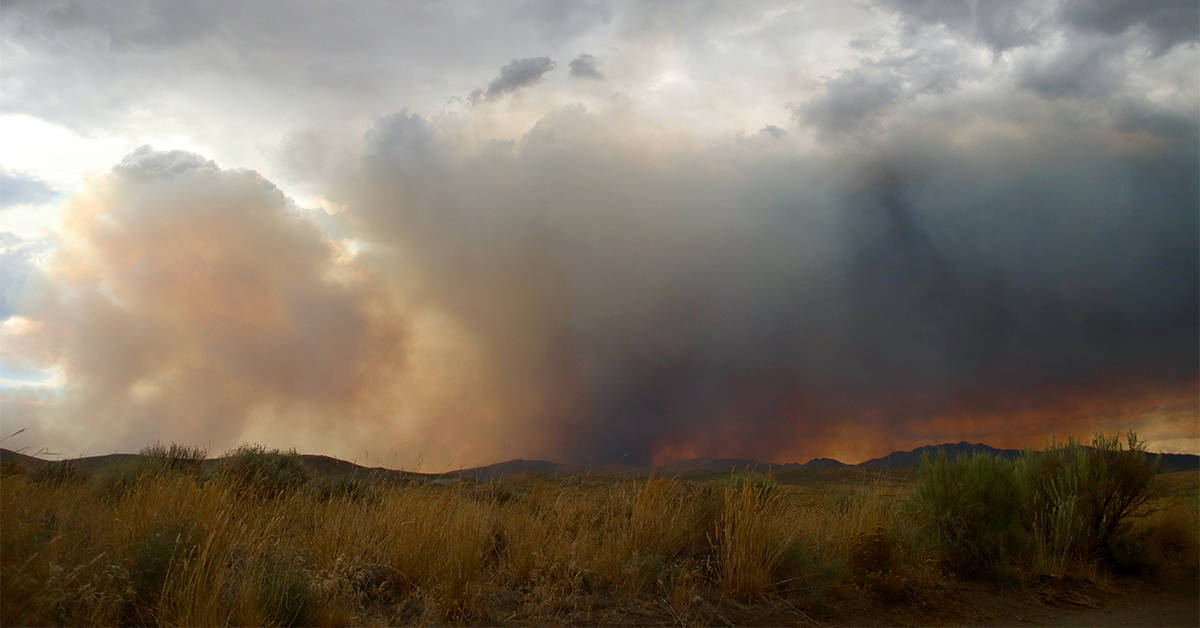 Image of smoke from the Loyalton Fire over a meadow
