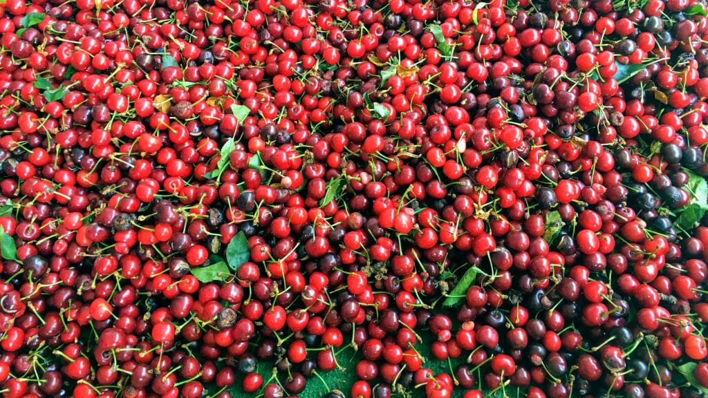 Photo of cherries at a Sacramento fruit stand. May 2017 saw an early arrival of the cherry season in Sacramento. (Photo courtesy of Bao-Ngoc Nguyen)