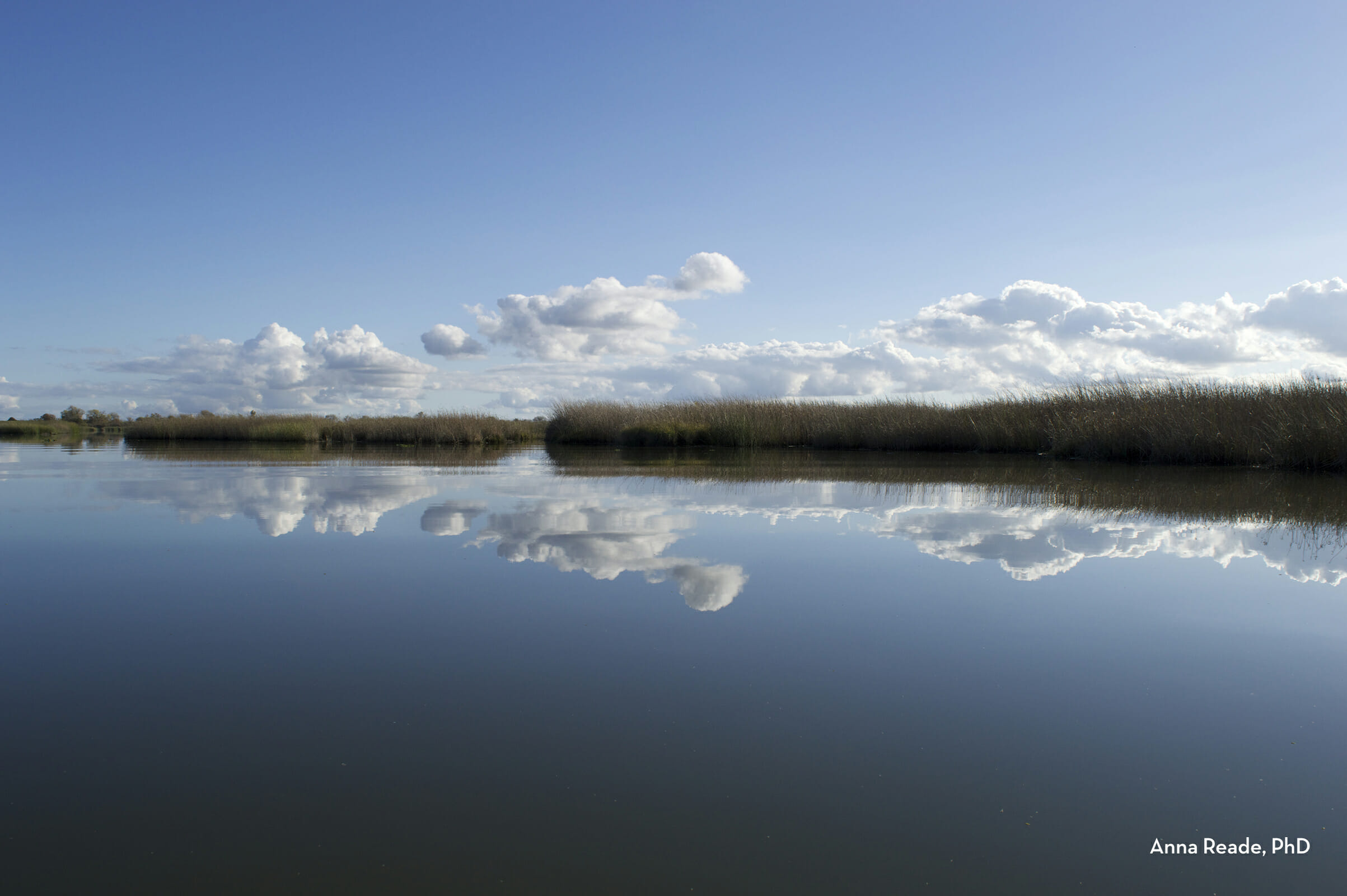 beautiful river delta